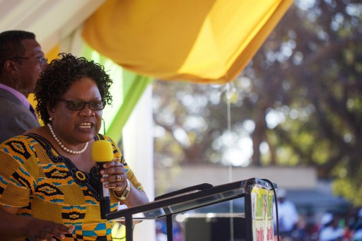 WEB_PHOTO_JoiceMujuru _130616
