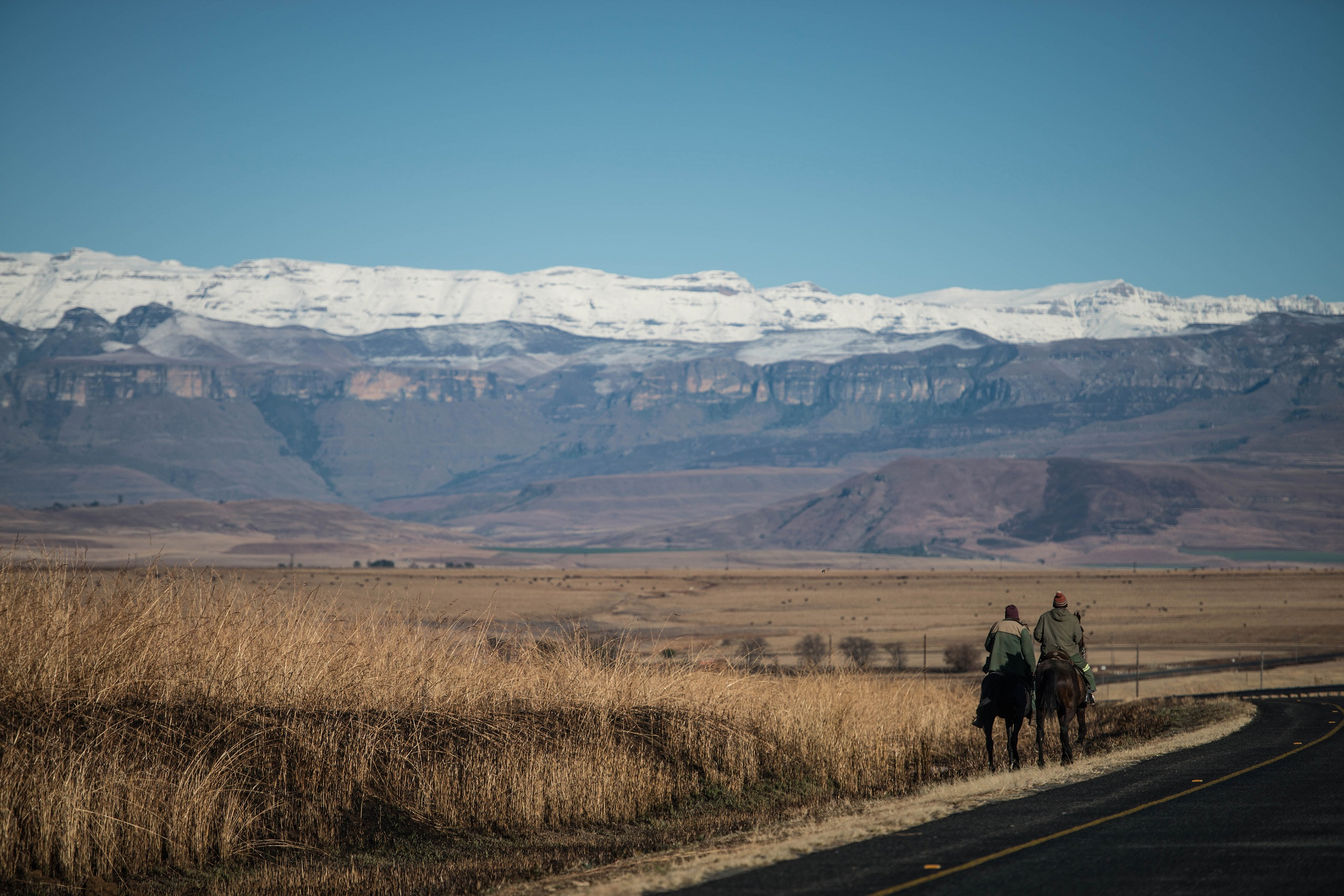 Photo_Web_Snow_Drakensberg_180817