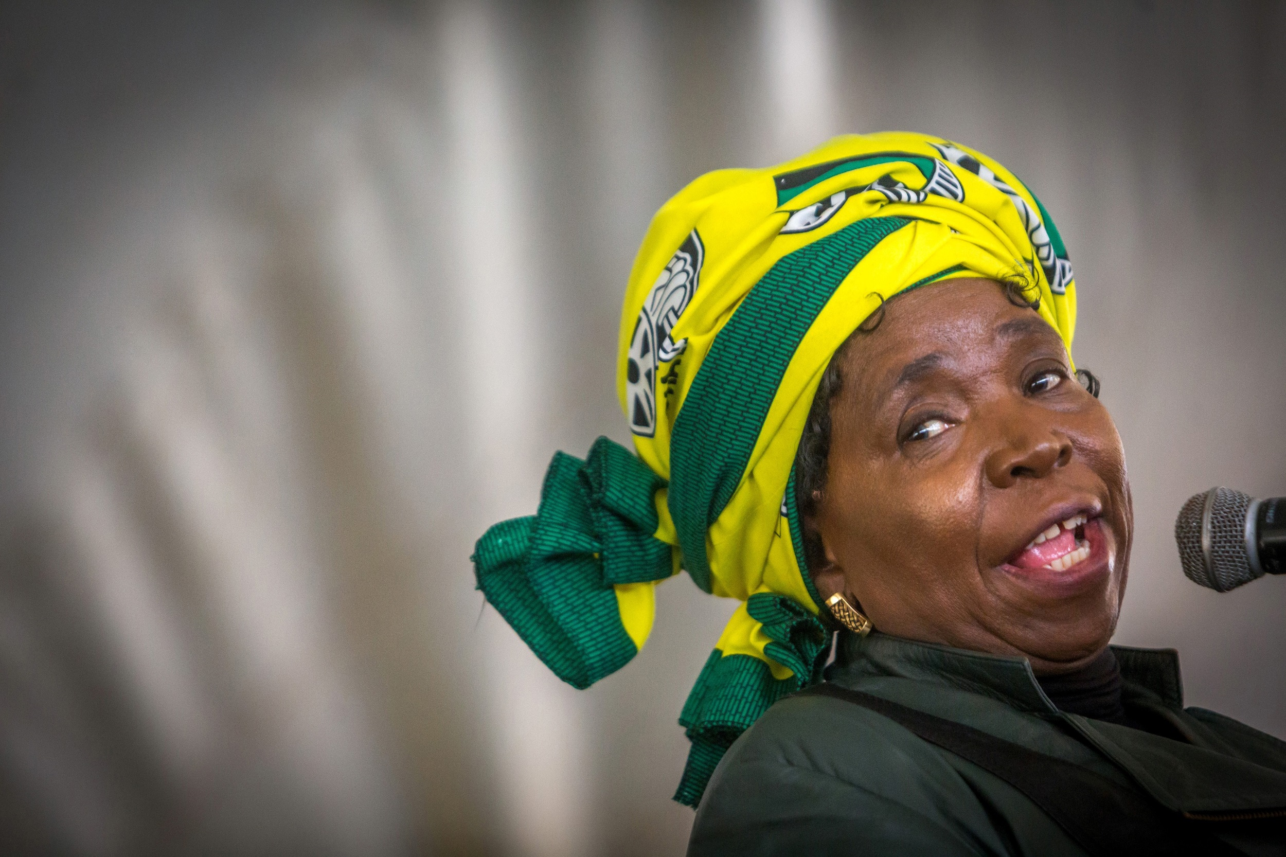 Photo_Web_Dlamini_Zuma_141117