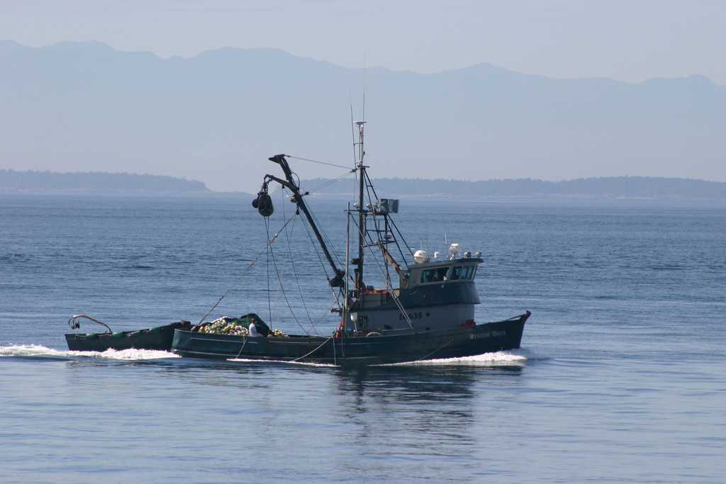 WEB_PHOTO_ FishingTrawler_060114