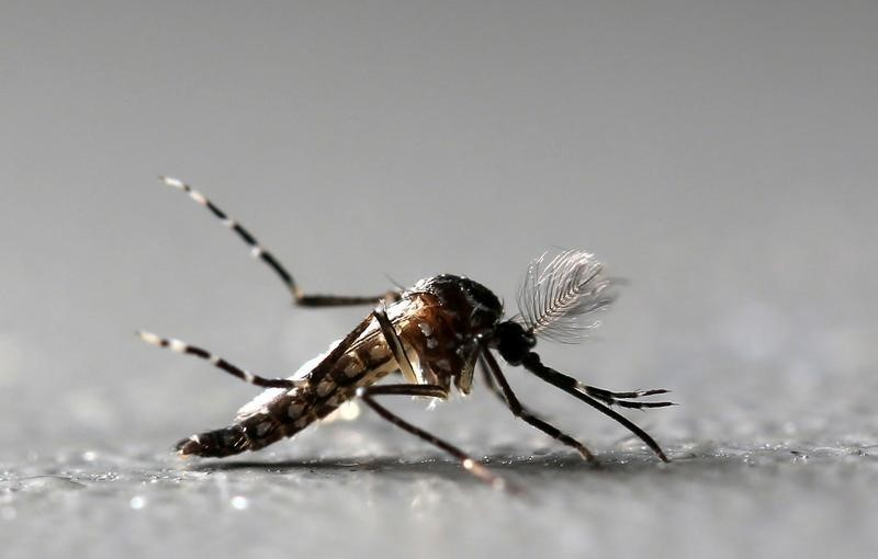 India's Rajasthan hit hard by Zika virus