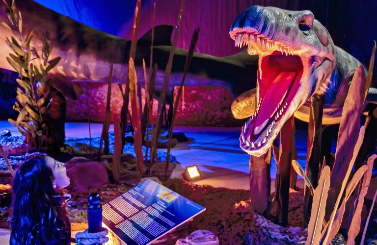 Were dinosaurs killed off by asteroid or volcanoes? | eNCA