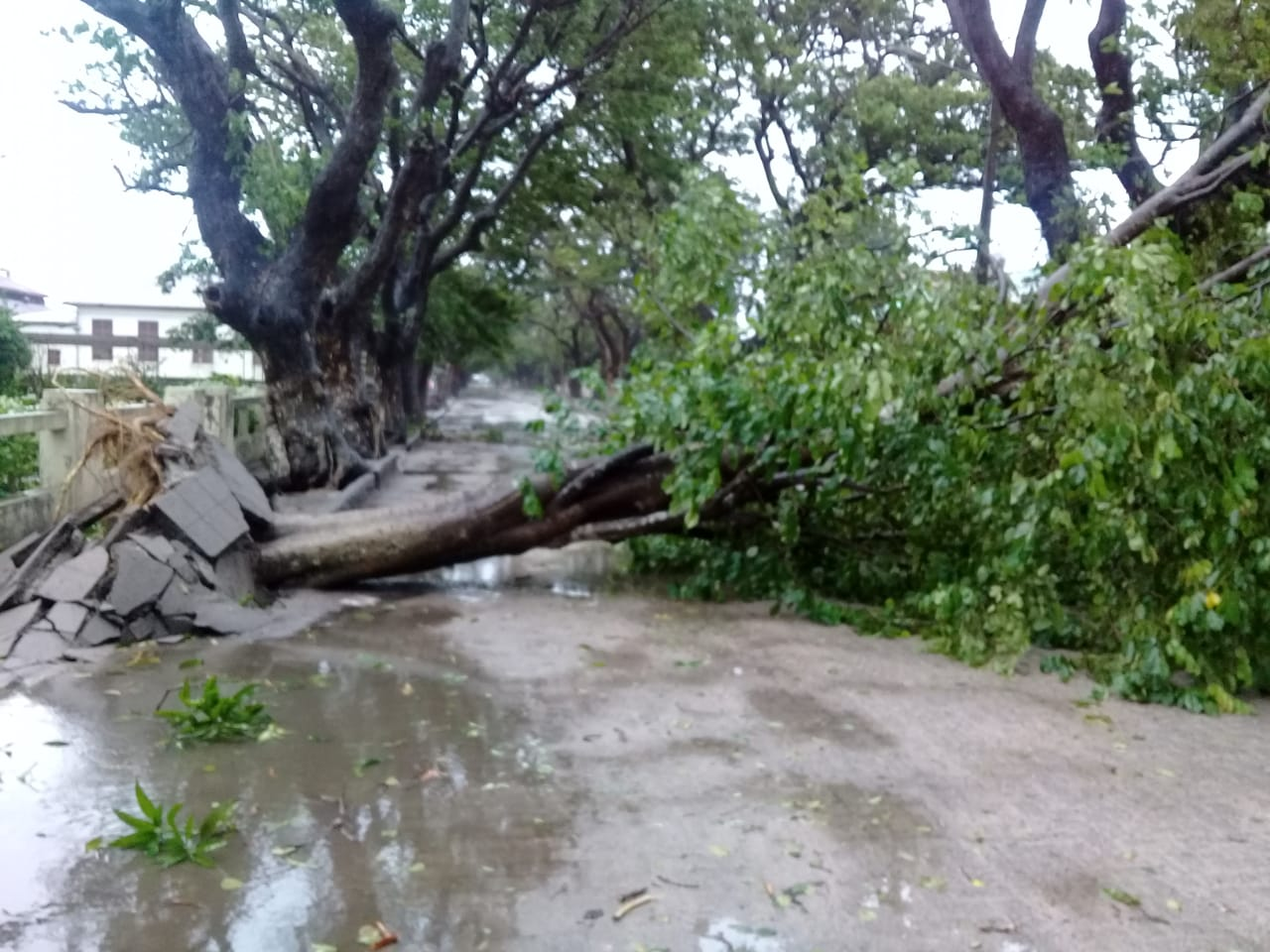 Tropical cyclone Idai battered Mozambique's coastal city of Beira leaving its 530,000 residents cut off Friday after power cables were downed.