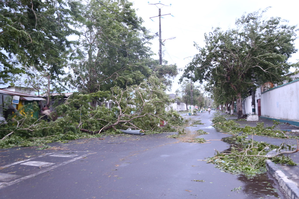 Fallen trees are pictured on a road on April 25, 2019 in Moroni after tropical storm Kenneth hit Comoros before heading to recently cyclone-ravaged Mozambique.