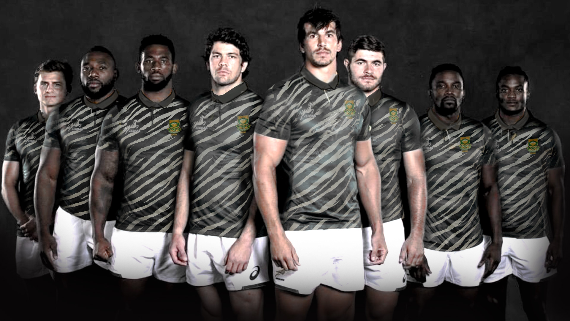 Springboks new Zebra kit.