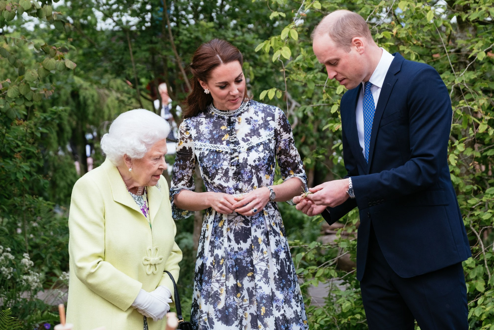 The Duke and Duchess of Cambridge showed The Queen some of the activities that those experiencing the Chelsea Flower Show's Back to Nature Garden can enjoy.