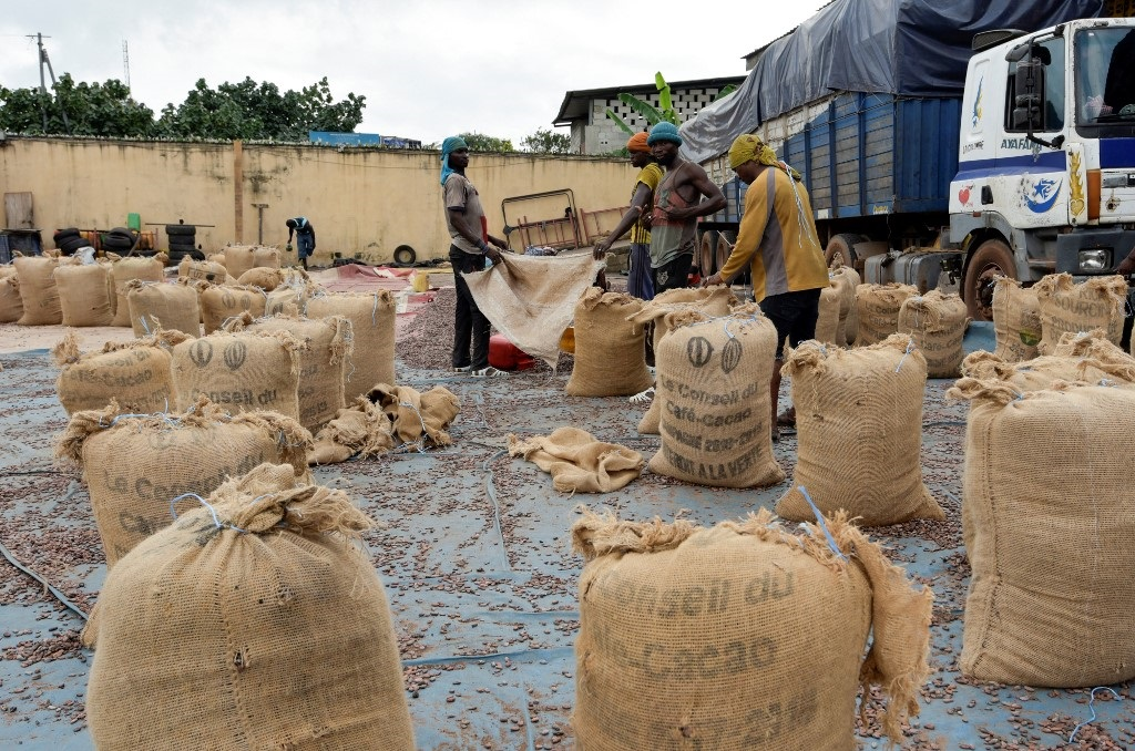 People fill bags with cacao beans at a cocoa exporter's in Abidjan, on July 3, 2019.