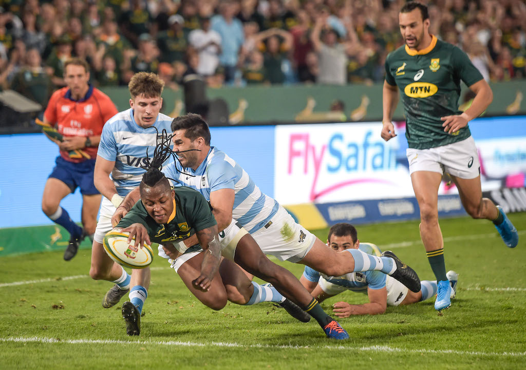 Four dropped from Springboks' Rugby World Cup training squad