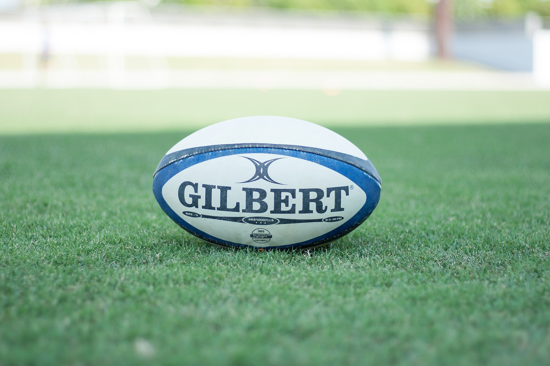 New Zealand's North vs. South postponed due to COVID restrictions