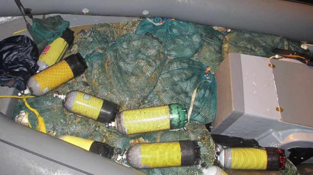 Abalone Seized After High Speed Sea Chase Enca