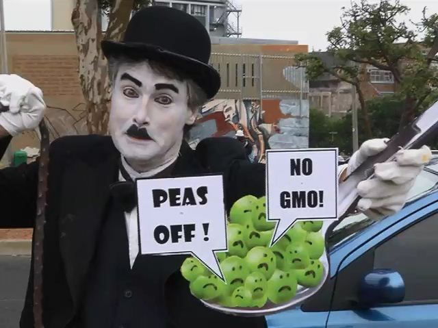 Local protestors join in global rally against GMO giant Monsanto