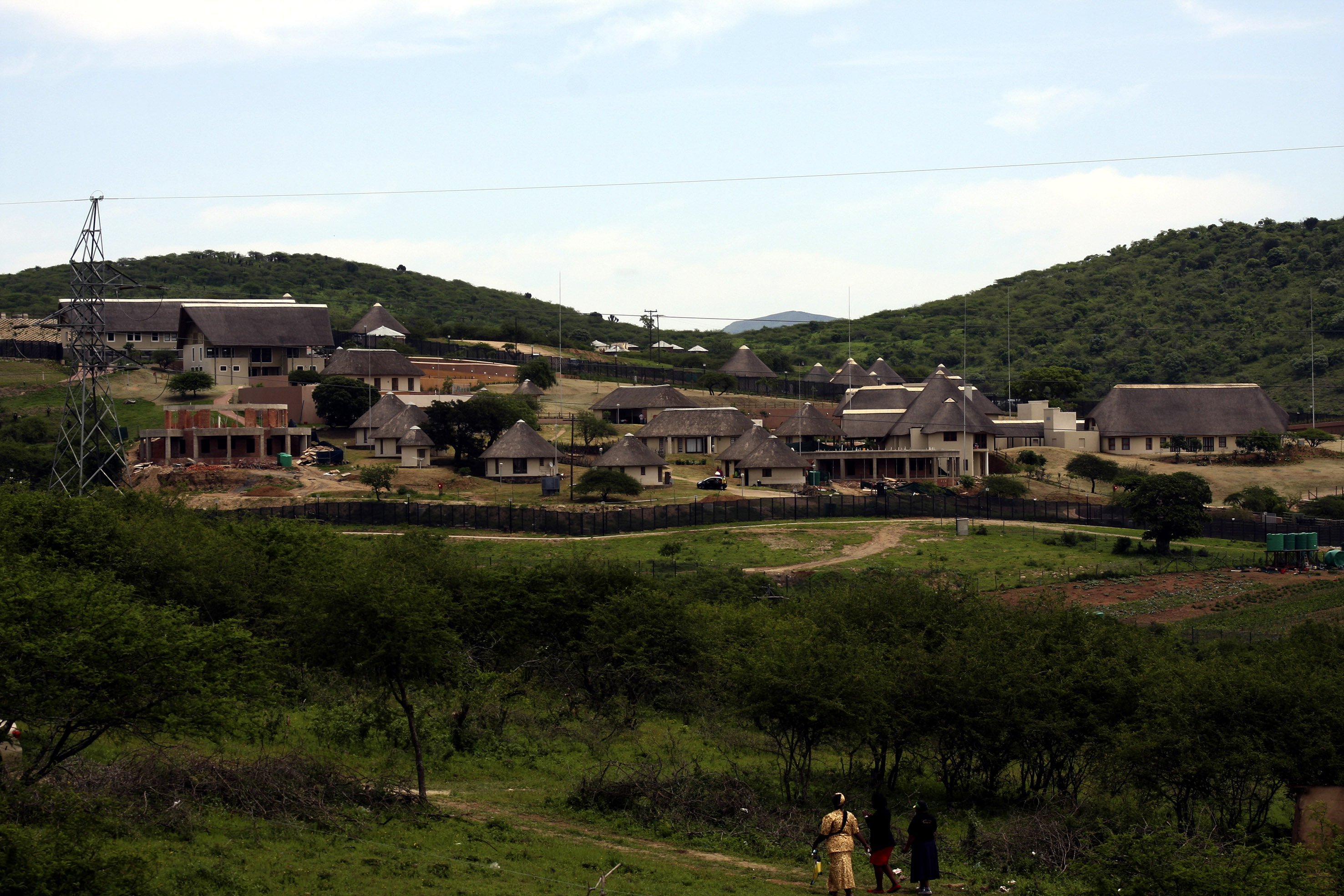 Cattle meant for poor allegedly sent to Zuma's Nkandla homestead