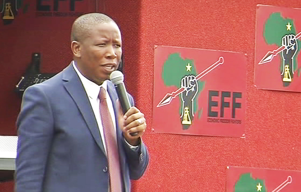 WEB_PHOTO_LIVE_MALEMA_07_MID