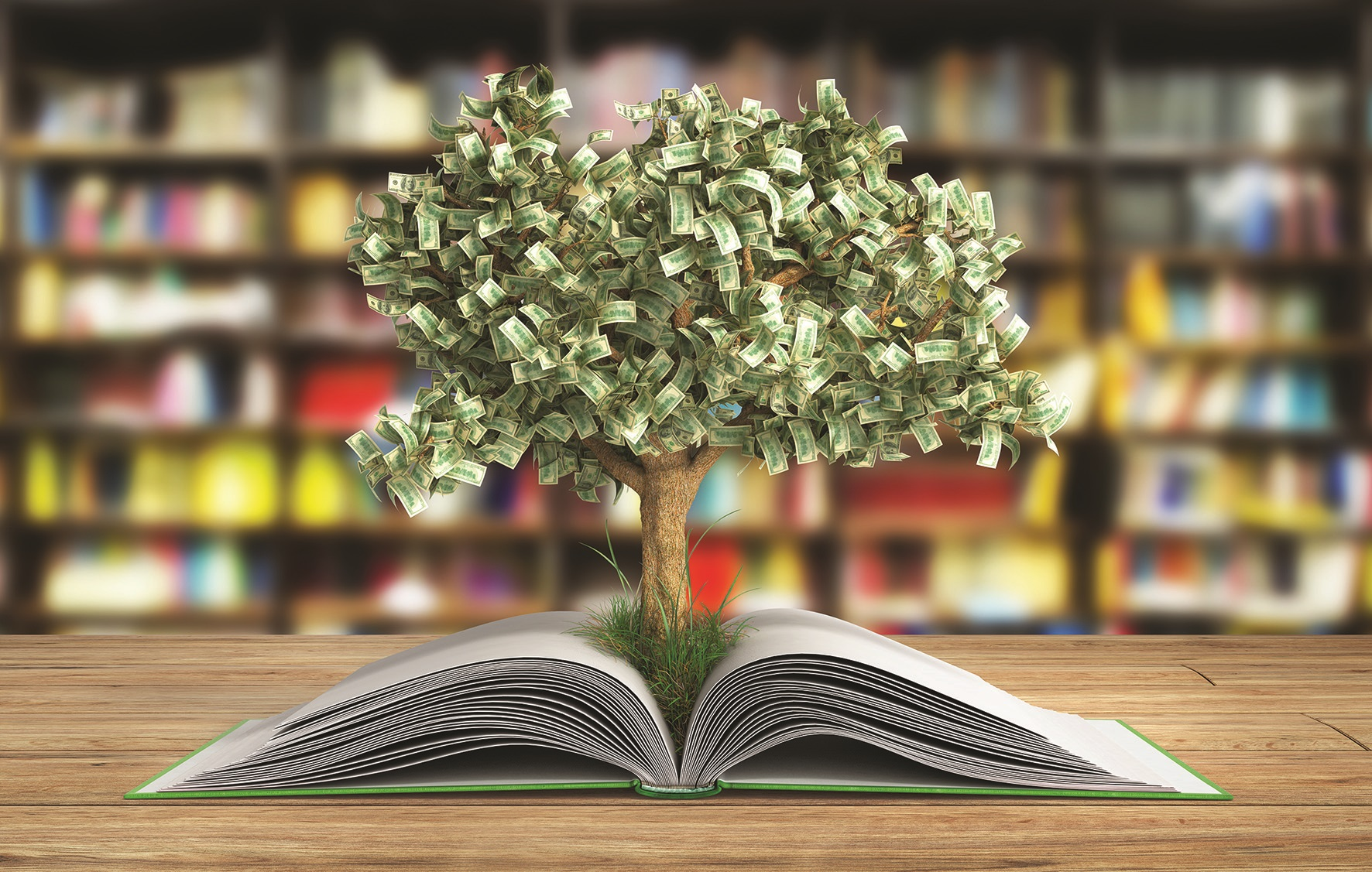 WEB_PHOTO_MONEY_TREE_BOOK_06092017