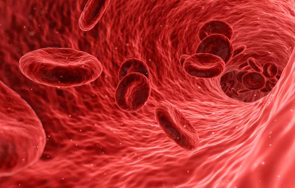 web_photo_Blood_Cells_180417