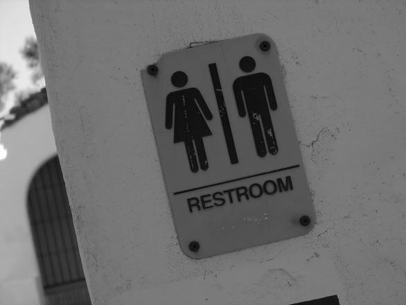 Photo_Web_Toilet_Sign_100516