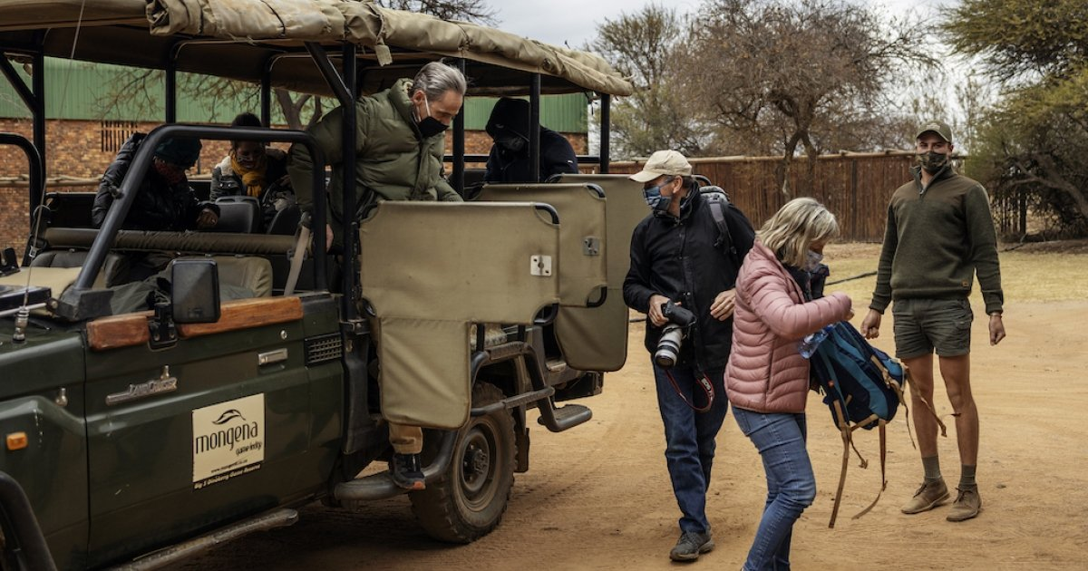 Local tours bring some relief to SA safari industry - eNCA