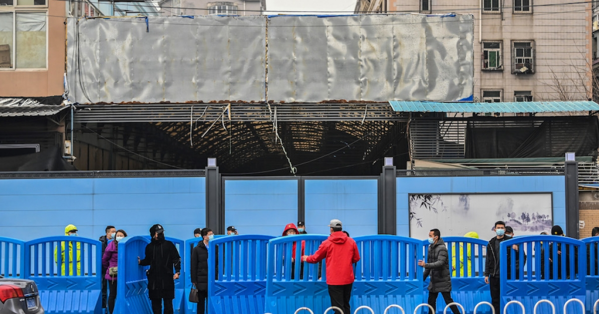 WHO probe team visits Wuhan market at heart of first COVID-19 outbreak thumbnail