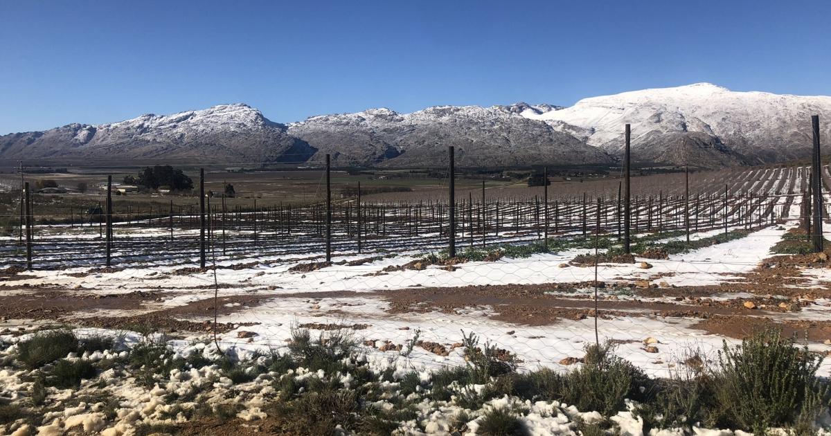 Cold snap sweeps across SA