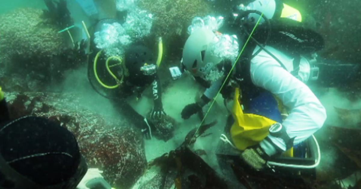 Sunken Slave Ship Memorialised Enca