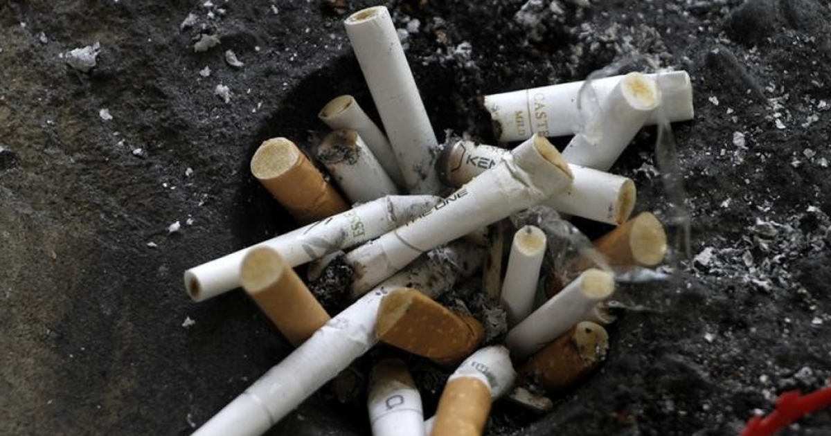 Fita granted leave to appeal dismissal of cigarette ban challenge - eNCA