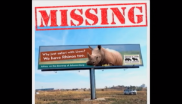 This giant billboard is missing and the Rhino and Lion Nature Reserve wants it back.