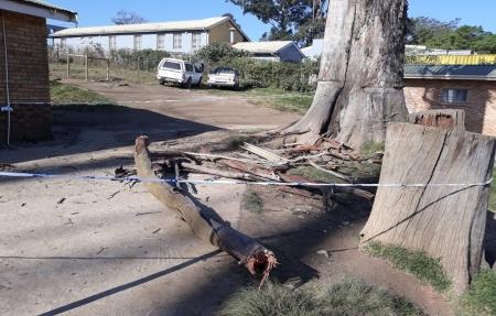 Lusikisiki pupil dies in freak school accident   eNCA