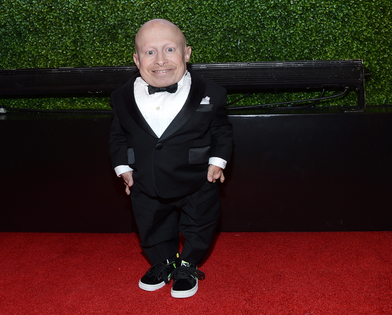 Verne Troyer: a cult star who sustained a career with dignity and good humour | Peter Bradshaw